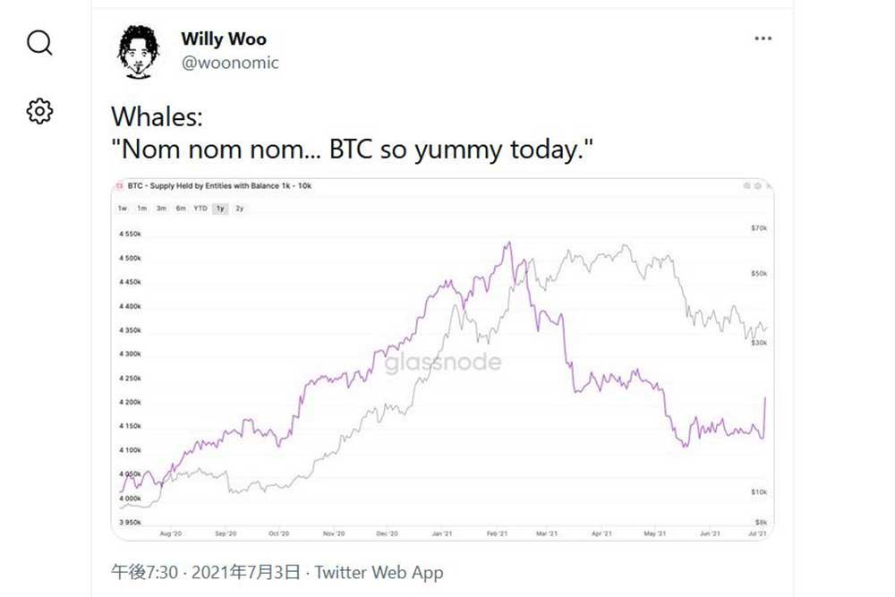 Willy Woo Twitter 大口投資家がビットコインを買っている